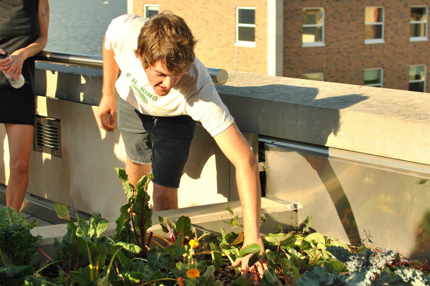 A member of F.H. King Students for Sustainable Agriculture at an Urban Agriculture Workshop